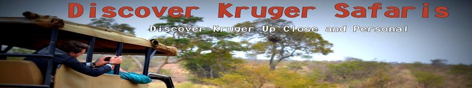 Discover Kruger
