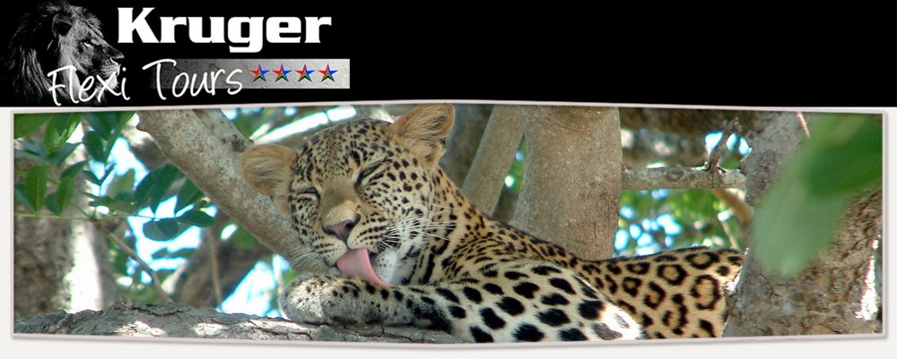 Kruger Flexi Tours