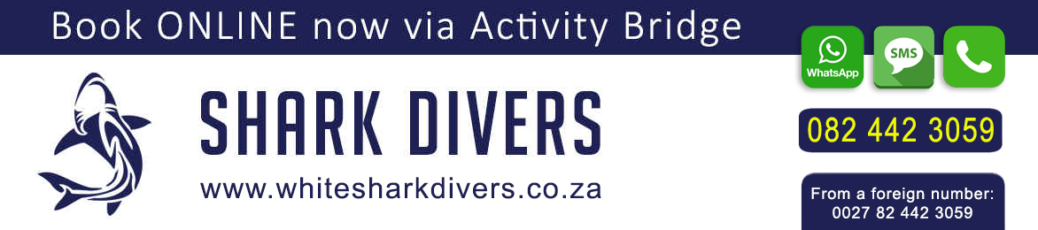 White Shark Divers