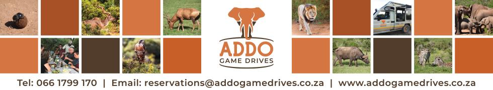 Addo Game Drives PTY LTD