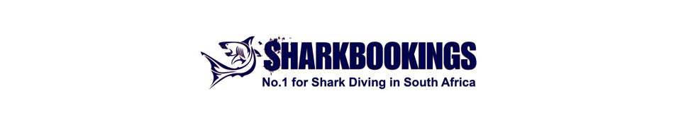Sharkbookings
