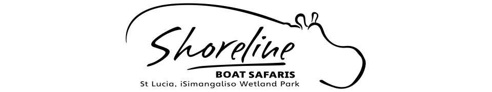 Shoreline Boat Safaris