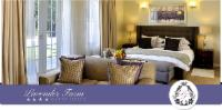 Lavender View Twin / Double Suite