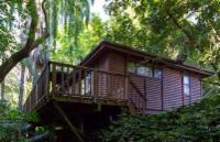 Tree House (Sleeps 4)