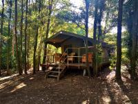 Safari Tent, Forest Walk