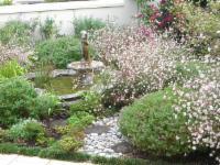Fontana in garden