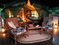 Delux Tent 11