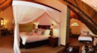 Standard Suite - Double Room