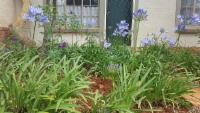 Country Garden Room : Double Room