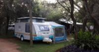 Elephant B SINGLE camping site 4 guests