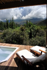 Luxury Queen - with private plunge pool