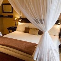 Luxury Suite B-Room 6