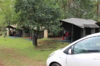 Camp Site 7