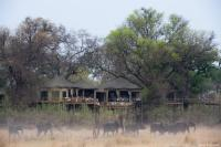 Nambwa Tented Lodge-Luxury Suite