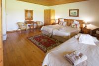 Triple Room - Single beds