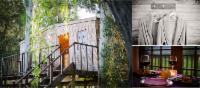 Luxury Tree House: TH 1 or TH 2 or TH3