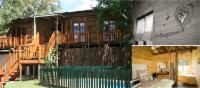 Luxury Self-Catering Tree Lodge