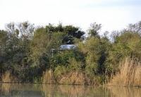 Pygmy River Cottage