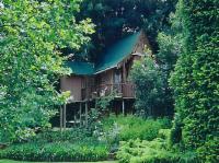 Bottle Treehouse