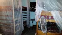 Mixed Dorm 1