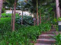 Bali Cottage : Amidst the Constantia Wine Farms
