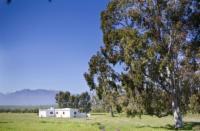 Vineyard Groeners Cottage