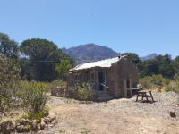 Tortoise Cottage
