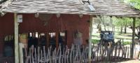 Hornbill Lodge