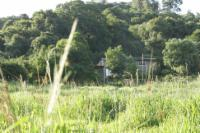 Birdsong Cottage